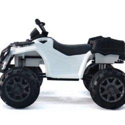 Электроквадроцикл Grizzly Next Т009МР 4WD белый (АКБ 12v 10ah, колеса резина, сиденье кожа, пульт, музыка)